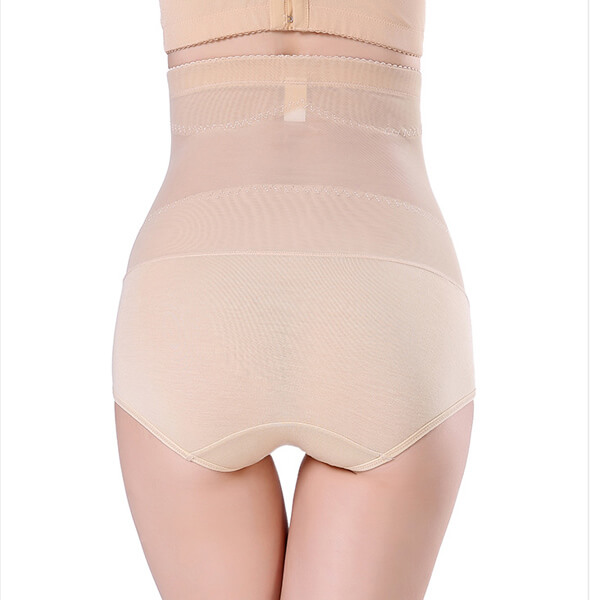 Women's Shapewear Tummy Control Waist Slimming Hi-Waist Brief